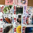 日本語絵本
