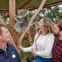 動物園 と アボリジニ文化のコラボイベント【Victoria】